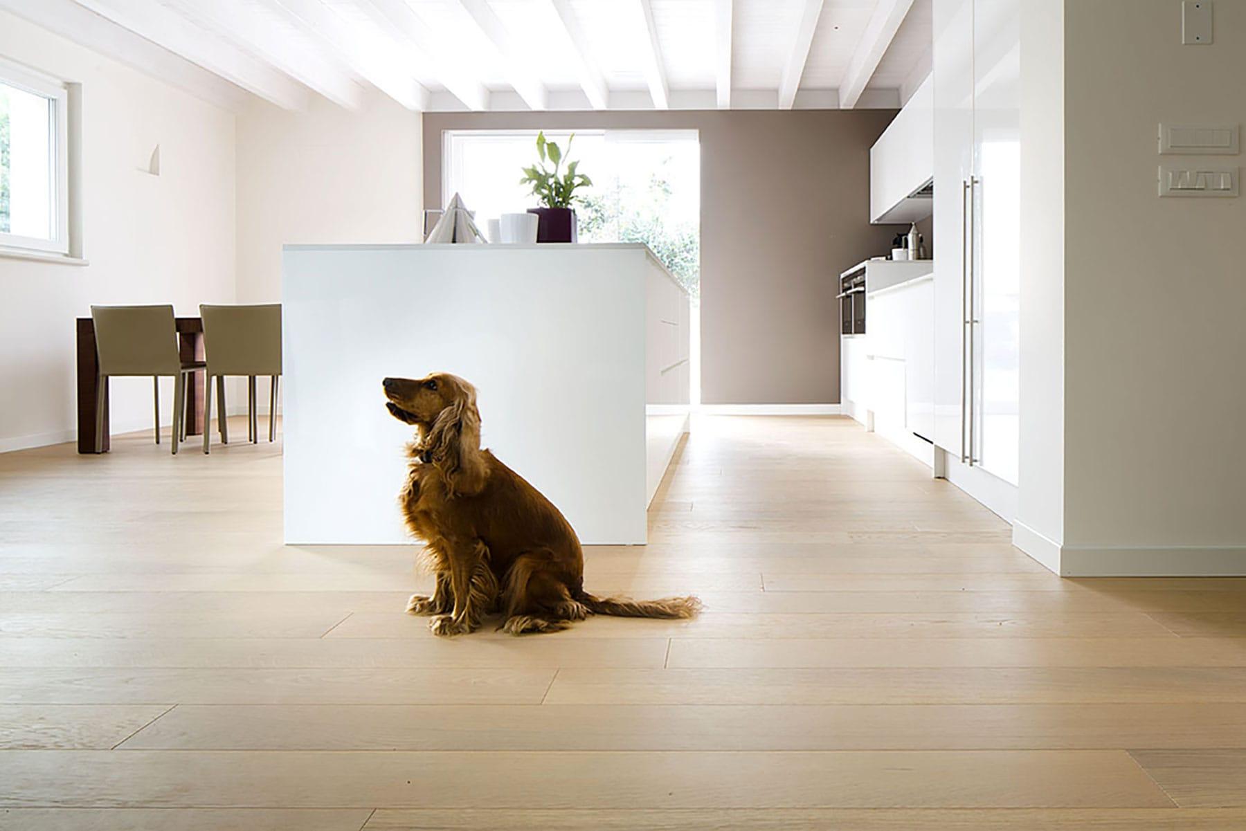 Pavimenti In Legno Rovere : Profilegno pavimenti in rovere